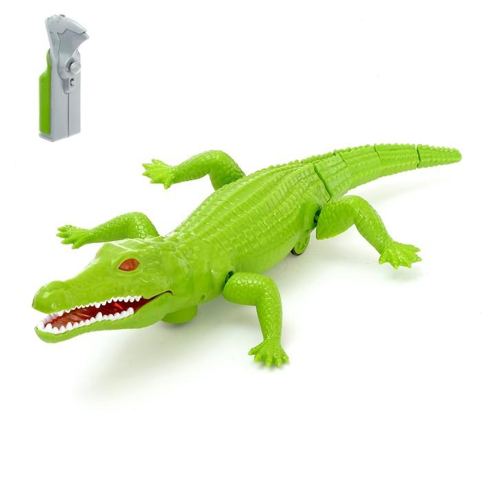 """Крокодил радиоуправляемый """"Аллигатор """", работает от батареек"""