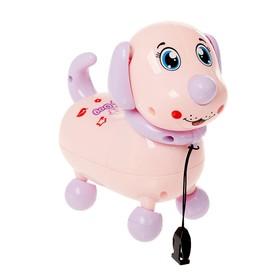 Развивающая игрушка «Милый пёсик», световые эффекты, МИКС Ош