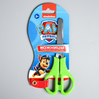 Ножницы детские 12 см, безопасные, пластиковые ручки,МИКС, PAW PATROL
