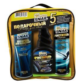 Набор подарочный Golden Snail, универсальный, Интерьер 'Чистый салон', GS 5220, микс Ош