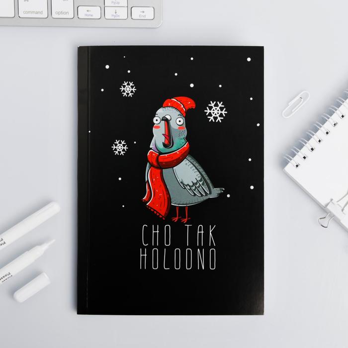 Ежедневник Зимняя коллекция CHO TAK HOLODNO, формат А5, 80 листов