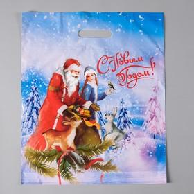 Пакет 'Новый Год в лесу', полиэтиленовый с вырубной ручкой, 38х45 см, 45 мкм Ош