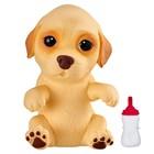 Интерактивная игрушка Cквиши-щенок «Лабрадор»
