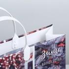 Пакет подарочный пластик «Новогоднее фото», 30 × 5 × 30 см - Фото 3