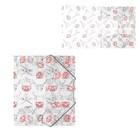 Папка на резинках А5+ пластиковая Erich Krause Bonjour