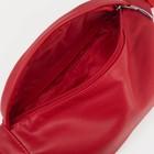 Сумка поясная, отдел на молнии, наружный карман, цвет красный - Фото 3