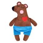 Мягкая игрушка-грелка «Медведь» 30 см