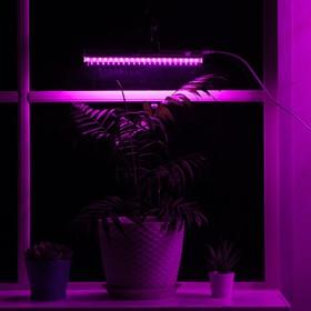 Светильник для растений, 6 Вт, 7 мкмоль/с, длина 300мм, присоска на стекло, универсальный Ош