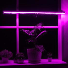 Светильник для растений, 10 Вт, 11 мкмоль/с, длина 600мм, присоска на стекло, универсальный   465989 Ош