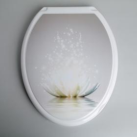 Сиденье для унитаза с крышкой «Лотос», цвет белый