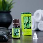 Эфирное масло Пачули в индивидуальной упаковке 10 мл - Фото 1