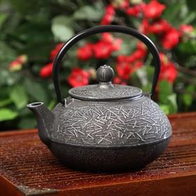 Чайник «Хрома», 800 мл, с ситом, эмалированное покрытие внутри Ош