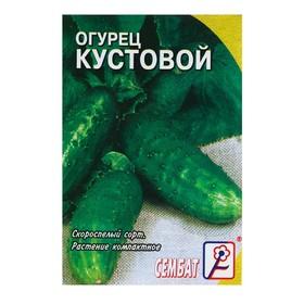 "Семена Огурец ""Кустовой"", 0,5 г"