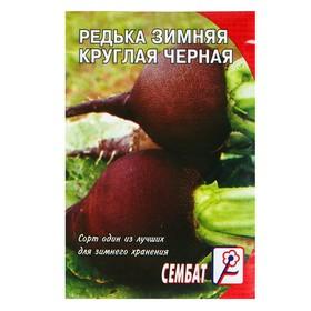 """Семена Редька """"Зимняя круглая черная"""", 3 г"""