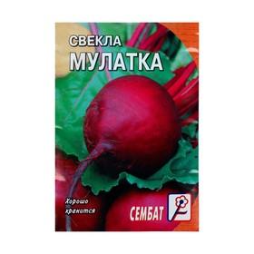 """Семена Свекла """"Мулатка"""", 2 г"""