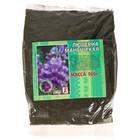 Семена цветов Люцерна изменчивая