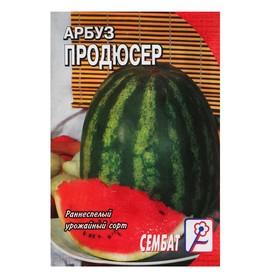 Семена Арбуз 'Продюсер', 1 г Ош