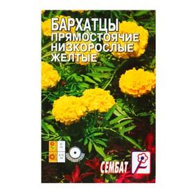 Семена цветов Бархатцы прямостоячий низкорослый, желтый, О, 0,1 г Ош