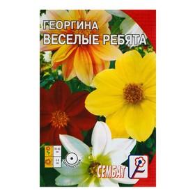 Семена цветов Георгина 'Веселые ребята', О, 0,1 г Ош