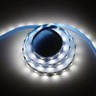 Светодиодная лента Ecola, 60Led/m, 14.4 Вт/м, 840 Лм/м, 14Lm/LED, 6000 К, IP20, 1 м,10 мм