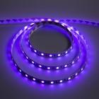 Светодиодная лента Ecola, 60Led/m, 14.4 Вт/м, RGB, IP20, 3 м, 10 мм