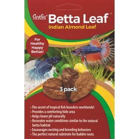 Листья индийского миндаля Caribsea BETTA LEAF 3 штуки в упаковке Ош