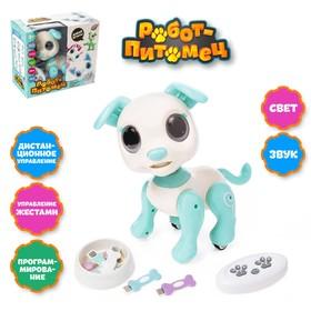 Робот-собака «Питомец: Щенок», радиоуправляемый, интерактивный, работает от аккумулятора, цвет бирюзовый