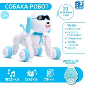 Робот-собака Charlie, радиоуправляемый, световые и звуковые эффекты, русская озвучка Ош