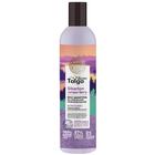 Шампунь для волос Natura Siberica D.Taiga «Защита цвета», 400 мл