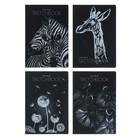 Тетрадь-скетчбук B5, 60 листов, твёрдая обложка на гребне Bruno Visconti г/м?, чёрная, микс из 4-х дизайнов