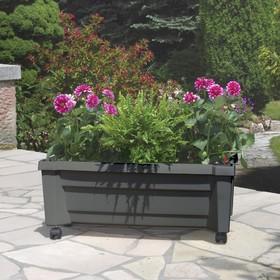 Ящик для растений «Калипсо», 42 л, на колёсах, цвет антрацит