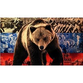 Флаг прямоугольный на липучке 'Медведь' флаг, 145х250 мм Ош