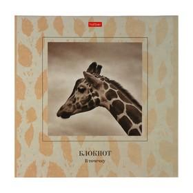 Блокнот 205х205 мм, 48 листов в точку на скрепке «Жираф», обложка мелованный картон, тиснение, УФ-лак, тонированный блок Ош