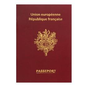 Записная книжка А6, 16 листов «Паспорт. Франция», обложка мелованный картон, матовая ламинация, 3D-фольга, блок 80 г/м² Ош