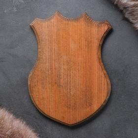 Медальон для охотничьих трофеев «Охотничий», крашеная, 25х32 см, массив бука Ош