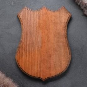 Медальон для охотничьих трофеев «Под рога», крашеная, 25х32 см, массив бука Ош