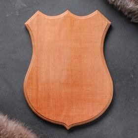 Медальон для охотничьих трофеев «Под рога», некрашеная, 25х32 см, массив бука Ош
