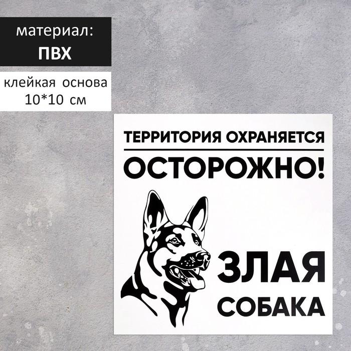 "Табличка ""ЗЛАЯ СОБАКА"" 100х100мм, ПВХ"