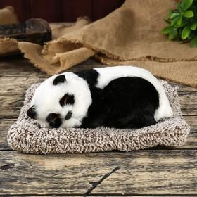Пушистик искусственный мех 'Панда спит на подушке' 10х21,5х17 см Ош