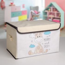 Короб для хранения с крышкой «Жеребёнок», 39×25×25 см Ош