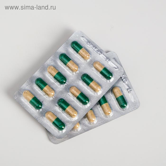Капсулы «Секрет бобра» с белым мумиё, при опухолевых процессах, в количестве 30 штук