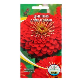 """Семена цветов Цинния """"Алое пламя"""", 0,2- 0,3 г"""