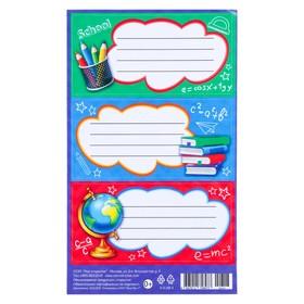 Наклейка на тетрадь 'Школьная' карандаши, глобус, 9,2 х 15,3 см Ош