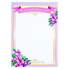Благодарность 'Сиреневая рамка' цветы Ош