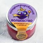 Крем-мёд с черникой «Концентрат», 30 г