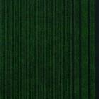 Дорожка грязезащитная REKORD 859, ширина 40 см, 25 п.м, Зеленый