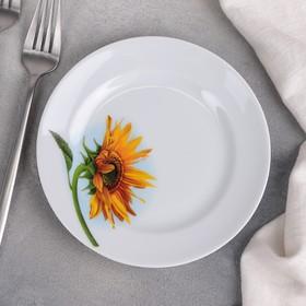 Тарелка мелкая«Подсолнух», d=17 см