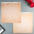 Бумага для скрапбукинга BoBunny - Коллекция «Double Dot» - лист «Peaches and Cream Vintage»   473524