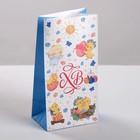 Пакет подарочный без ручек «Светлый день», 10 ? 19,5 ? 7 см