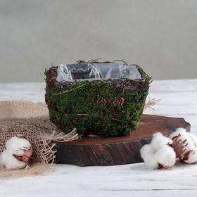 Кашпо плетёное квадратное «Лесная сказка», 13×13×8 см Ош